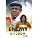 Enemy of the Kingdom