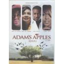Adams Apple- Season 2 Episodes 1-24